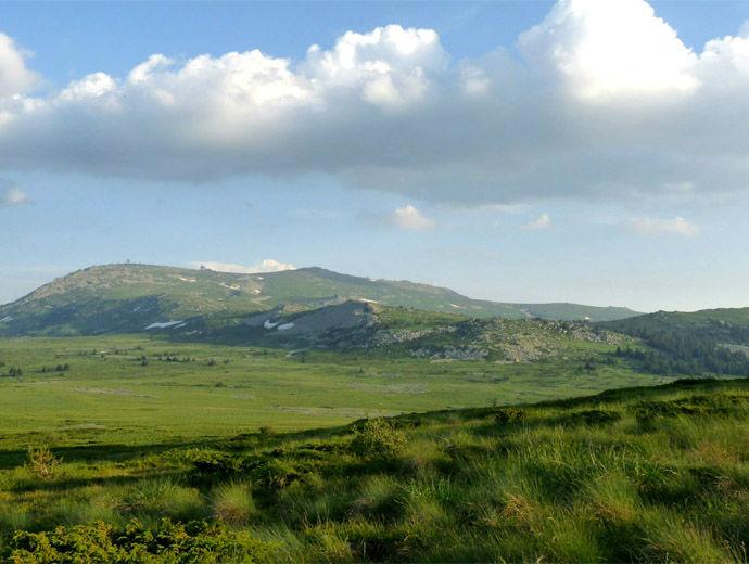 Витоша през лятото. Черни връх в далечината гледан от Торфено бранище.