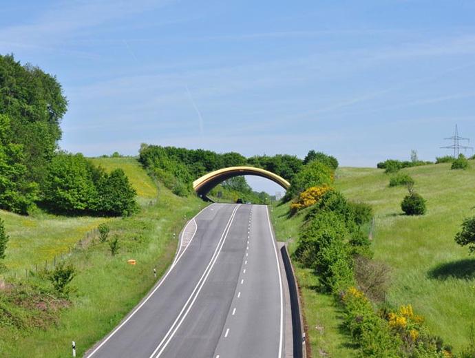 Мост за диви животни над път в Германия