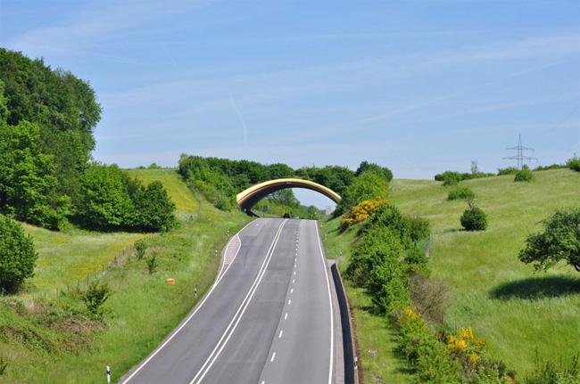 Мост за животни над път в Биркаенау, Германия