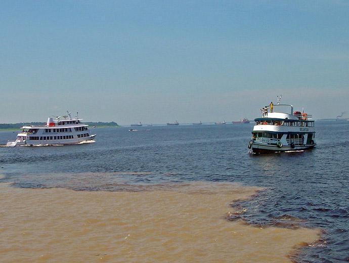 Водите на Рио Негро и Амазонка, край Манаус, погледнати отблизо.